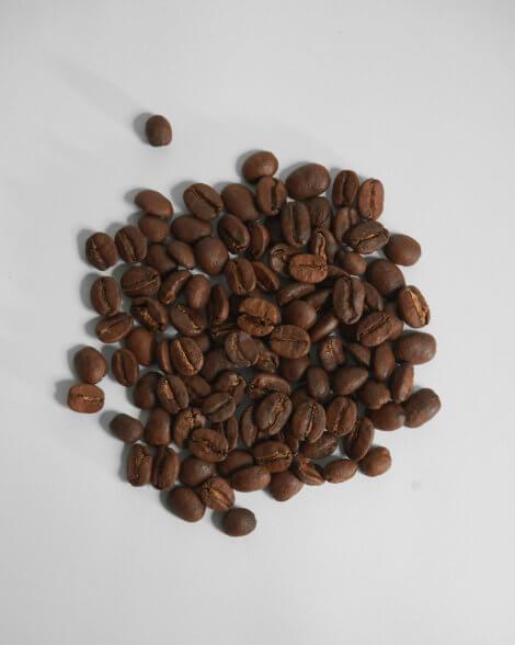 Brownie-3